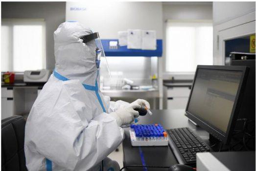 北京将抽查核验核酸检测证明 如发现造假行为必查处通报