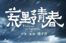 蔡宇《荒野青春》 十个奖项后怎样继续探索生命的意义